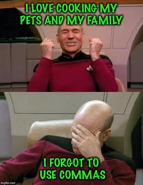 Wait! What? | I LOVE COOKING MY PETS AND MY FAMILY I FORGOT TO USE COMMAS | image tagged in captain picard | made w/ Imgflip meme maker