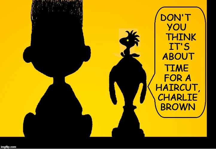 A Moment of Honesty Between Boy and Dog | DON'T YOU    THINK   IT'S  ABOUT TIME FOR A HAIRCUT, CHARLIE BROWN . | image tagged in vince vance,charlie brown,snoopy,woodstock,charlie schulz,peanuts | made w/ Imgflip meme maker