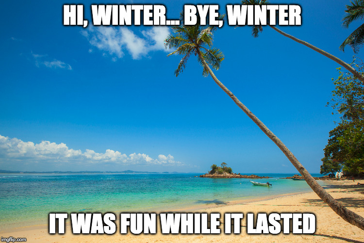 Bye, Winter | HI, WINTER... BYE, WINTER IT WAS FUN WHILE IT LASTED | image tagged in winter | made w/ Imgflip meme maker