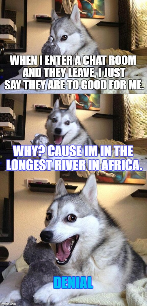 Bad Pun Dog Meme | WHEN I ENTER A CHAT ROOM AND THEY LEAVE, I JUST SAY THEY ARE TO GOOD FOR ME. WHY? CAUSE IM IN THE LONGEST RIVER IN AFRICA. DENIAL | image tagged in memes,bad pun dog | made w/ Imgflip meme maker