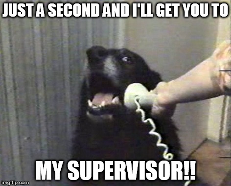 hello this is dog | JUST A SECOND AND I'LL GET YOU TO MY SUPERVISOR!! | image tagged in hello this is dog | made w/ Imgflip meme maker