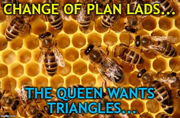 Illuminati confirmed... :) | CHANGE OF PLAN LADS... THE QUEEN WANTS TRIANGLES... | image tagged in cars kill honeybees,memes,animals,bees,shapes | made w/ Imgflip meme maker
