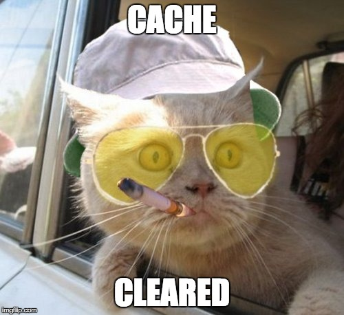 Fear And Loathing Cat Meme | CACHE CLEARED | image tagged in memes,fear and loathing cat | made w/ Imgflip meme maker