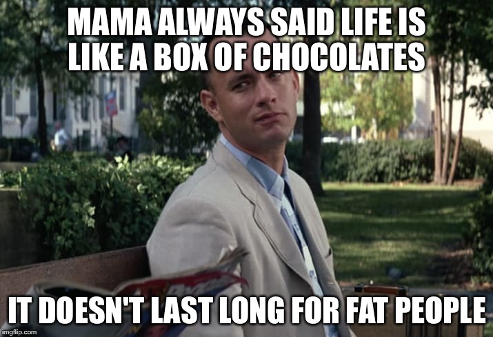 Forrest Gumps mama on fat people | MAMA ALWAYS SAID LIFE IS LIKE A BOX OF CHOCOLATES IT DOESN'T LAST LONG FOR FAT PEOPLE | image tagged in funny memes | made w/ Imgflip meme maker