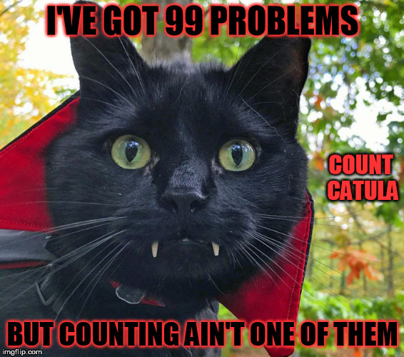 I'VE GOT 99 PROBLEMS BUT COUNTING AIN'T ONE OF THEM COUNT CATULA | made w/ Imgflip meme maker
