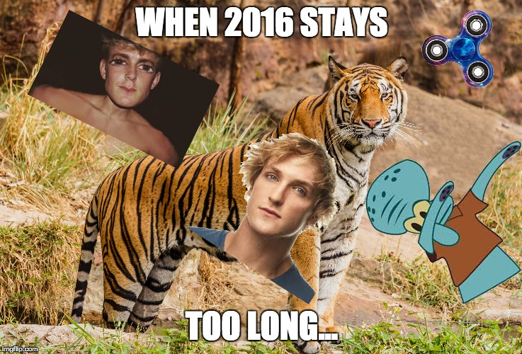 2016 IS OVER PEOPLE!!! | WHEN 2016 STAYS TOO LONG... | image tagged in 2016,dab,spidget finners,jake paul,logan paul,tiger | made w/ Imgflip meme maker