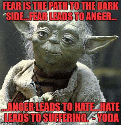 The Force Yoda | FEAR IS THE PATH TO THE DARK SIDE…FEAR LEADS TO ANGER… …ANGER LEADS TO HATE…HATE LEADS TO SUFFERING.  - YODA | image tagged in the force yoda | made w/ Imgflip meme maker