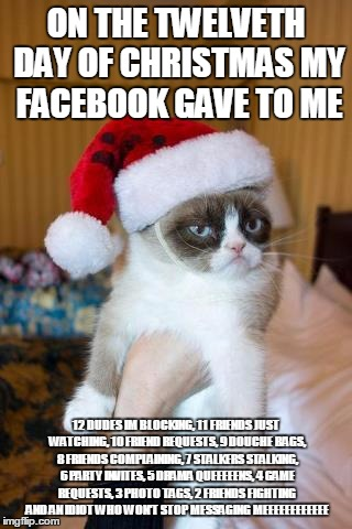 Grumpy Cat Christmas Meme | ON THE TWELVETH DAY OF CHRISTMAS MY FACEBOOK GAVE TO ME 12 DUDES IM BLOCKING, 11 FRIENDS JUST WATCHING, 10 FRIEND REQUESTS, 9 DOUCHE BAGS, 8 | image tagged in memes,grumpy cat christmas,grumpy cat | made w/ Imgflip meme maker