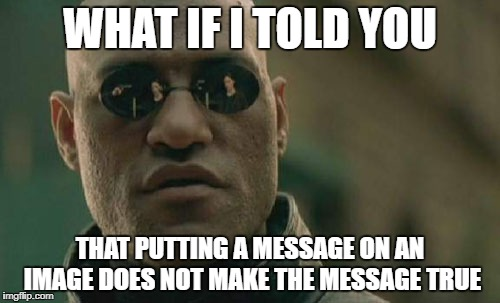 Matrix Morpheus Meme | WHAT IF I TOLD YOU THAT PUTTING A MESSAGE ON AN IMAGE DOES NOT MAKE THE MESSAGE TRUE | image tagged in memes,matrix morpheus | made w/ Imgflip meme maker