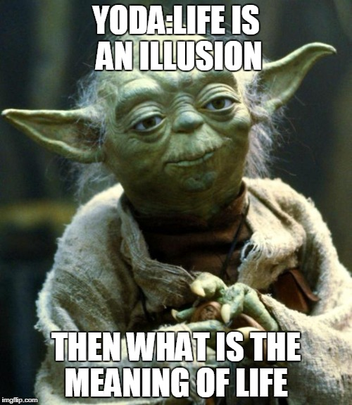 Star Wars Yoda Meme | YODA:LIFE IS AN ILLUSION THEN WHAT IS THE MEANING OF LIFE | image tagged in memes,star wars yoda | made w/ Imgflip meme maker