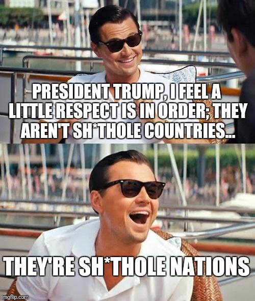 Leonardo Dicaprio Wolf Of Wall Street Meme | PRESIDENT TRUMP, I FEEL A LITTLE RESPECT IS IN ORDER; THEY AREN'T SH*THOLE COUNTRIES... THEY'RE SH*THOLE NATIONS | image tagged in memes,leonardo dicaprio wolf of wall street | made w/ Imgflip meme maker