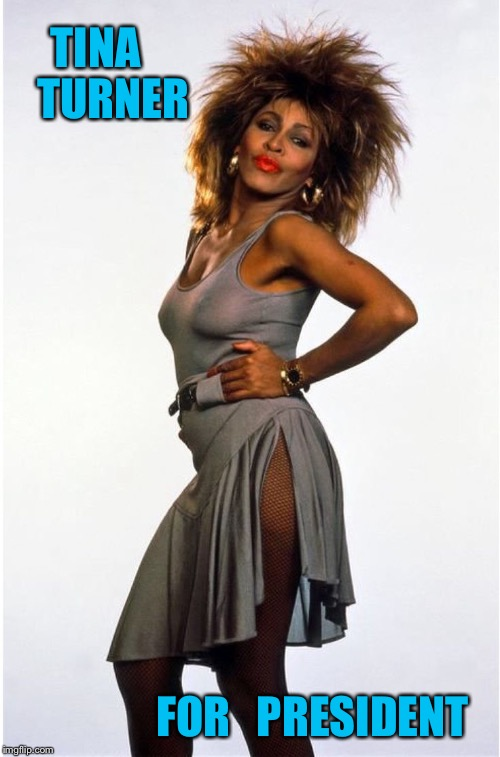 Tina turner | TINA    TURNER FOR   PRESIDENT | image tagged in tina turner | made w/ Imgflip meme maker