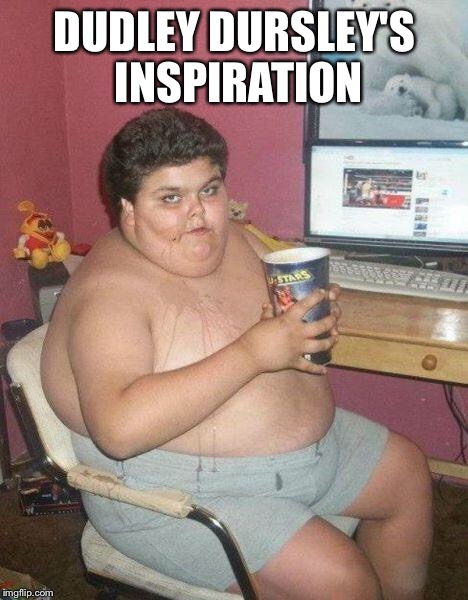 fat boy | DUDLEY DURSLEY'S INSPIRATION | image tagged in fat boy | made w/ Imgflip meme maker