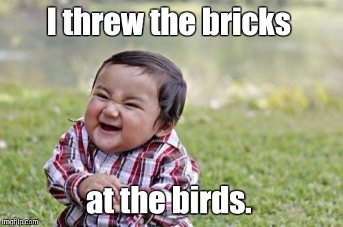 Evil Toddler Meme | I threw the bricks at the birds. | image tagged in memes,evil toddler | made w/ Imgflip meme maker