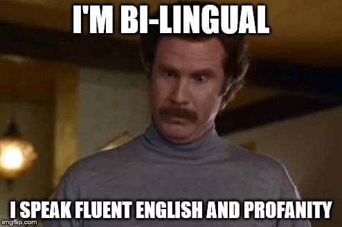 I'M BI-LINGUAL I SPEAK FLUENT ENGLISH AND PROFANITY | image tagged in i'm impressed | made w/ Imgflip meme maker