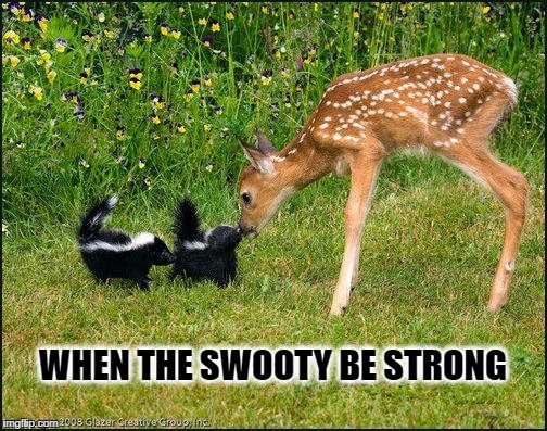 WHEN THE SWOOTY BE STRONG | image tagged in swiggity swooty,dank,bambi,smelly,the force awakens | made w/ Imgflip meme maker