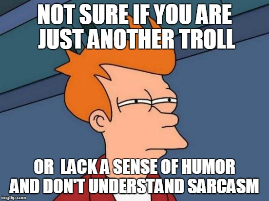Futurama Fry Meme | NOT SURE IF YOU ARE JUST ANOTHER TROLL OR  LACK A SENSE OF HUMOR AND DON'T UNDERSTAND SARCASM | image tagged in memes,futurama fry | made w/ Imgflip meme maker