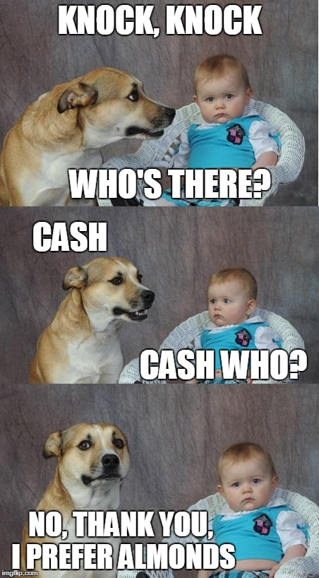 Bad joke dog | KNOCK, KNOCK NO, THANK YOU, I PREFER ALMONDS WHO'S THERE? CASH CASH WHO? | image tagged in bad joke dog | made w/ Imgflip meme maker