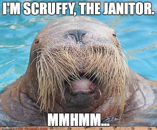 Scruffy gonna die the way he lived. | I'M SCRUFFY, THE JANITOR. MMHMM... | image tagged in walrus,futurama,scruffy,funny,silly | made w/ Imgflip meme maker