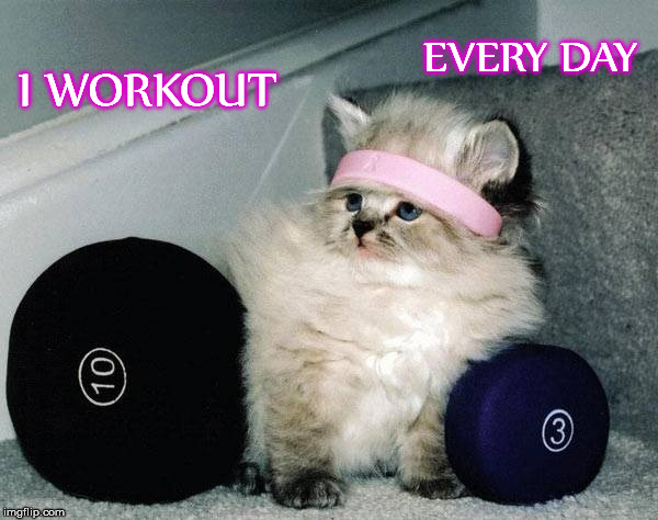I WORKOUT EVERY DAY | made w/ Imgflip meme maker