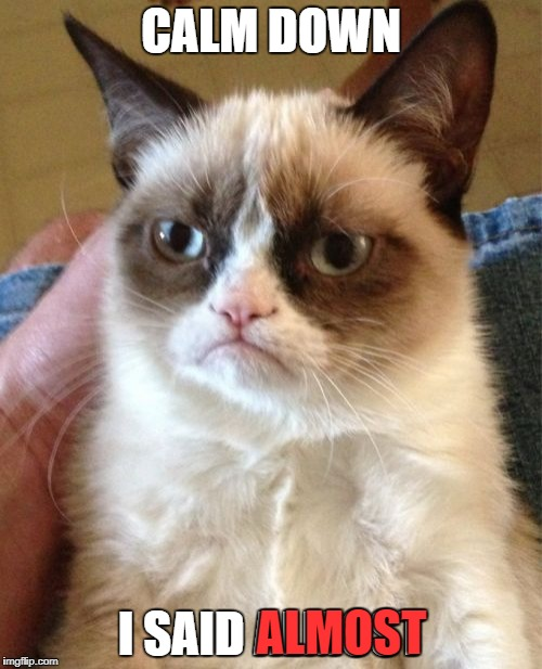 Grumpy Cat Meme | CALM DOWN I SAID ALMOST ALMOST | image tagged in memes,grumpy cat | made w/ Imgflip meme maker