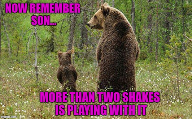 And you get it all over your pants leg!!! | NOW REMEMBER SON... MORE THAN TWO SHAKES IS PLAYING WITH IT | image tagged in bears,memes,taking a leak,funny,animals,life lessons | made w/ Imgflip meme maker