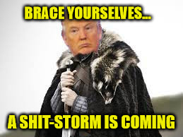 Donald Trump Brace Yourselves | BRACE YOURSELVES... A SHIT-STORM IS COMING | image tagged in brace yourselves,memes | made w/ Imgflip meme maker
