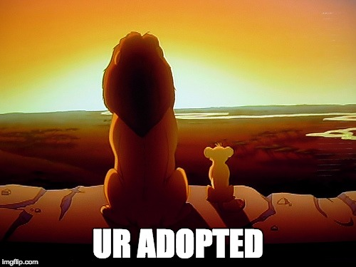 Lion King | UR ADOPTED | image tagged in memes,lion king | made w/ Imgflip meme maker