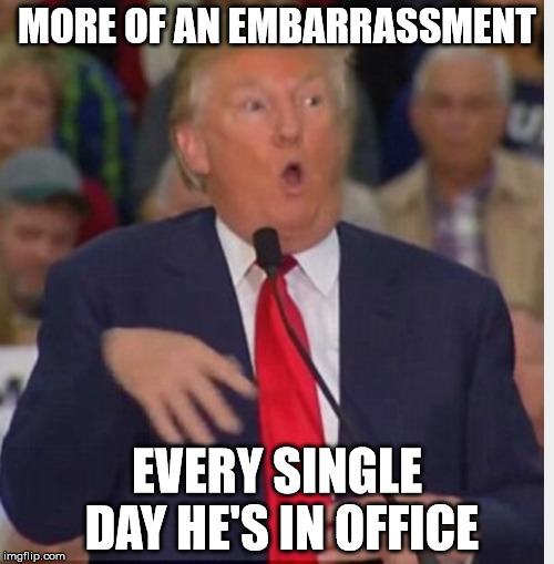 Donald Trump tho | MORE OF AN EMBARRASSMENT EVERY SINGLE DAY HE'S IN OFFICE | image tagged in donald trump tho | made w/ Imgflip meme maker