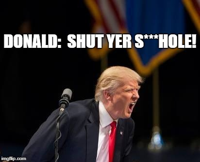 DONALD:  SHUT YER S***HOLE! | image tagged in shut yer hole | made w/ Imgflip meme maker