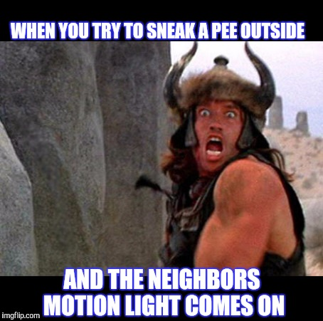 Country Living | WHEN YOU TRY TO SNEAK A PEE OUTSIDE AND THE NEIGHBORS MOTION LIGHT COMES ON | image tagged in pee,sneaky,busted,funny | made w/ Imgflip meme maker