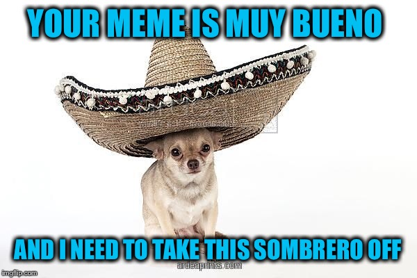 YOUR MEME IS MUY BUENO AND I NEED TO TAKE THIS SOMBRERO OFF | made w/ Imgflip meme maker