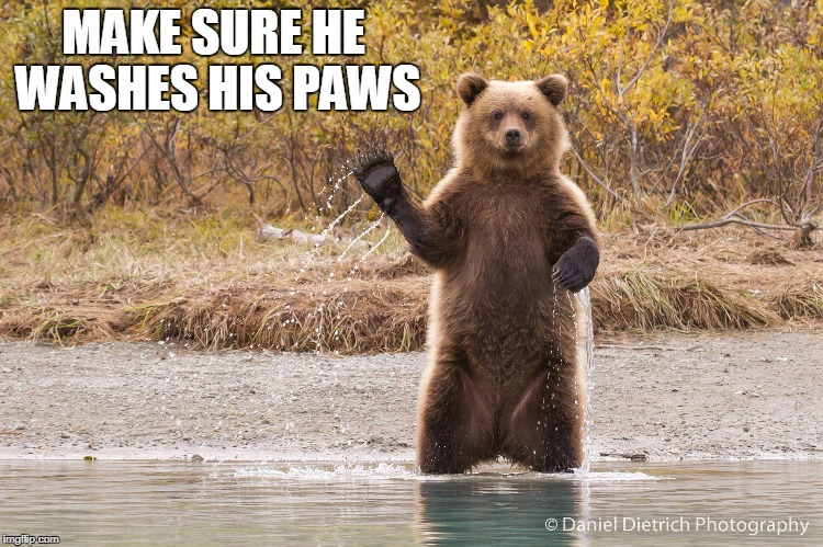MAKE SURE HE WASHES HIS PAWS | made w/ Imgflip meme maker