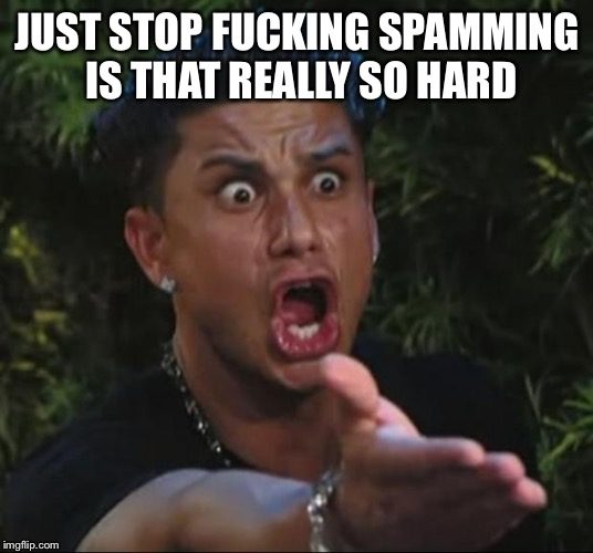 DJ Pauly D Meme | JUST STOP F**KING SPAMMING IS THAT REALLY SO HARD | image tagged in memes,dj pauly d | made w/ Imgflip meme maker