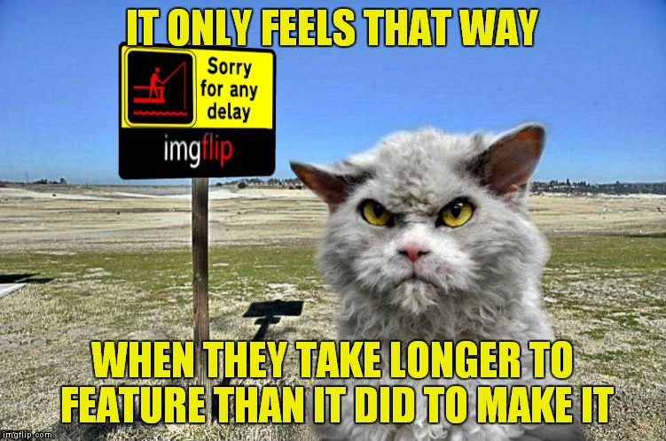 imgflip sorry with pompous cat | IT ONLY FEELS THAT WAY WHEN THEY TAKE LONGER TO FEATURE THAN IT DID TO MAKE IT | image tagged in imgflip sorry with pompous cat | made w/ Imgflip meme maker