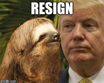 Political advice sloth | RESIGN | image tagged in political advice sloth | made w/ Imgflip meme maker