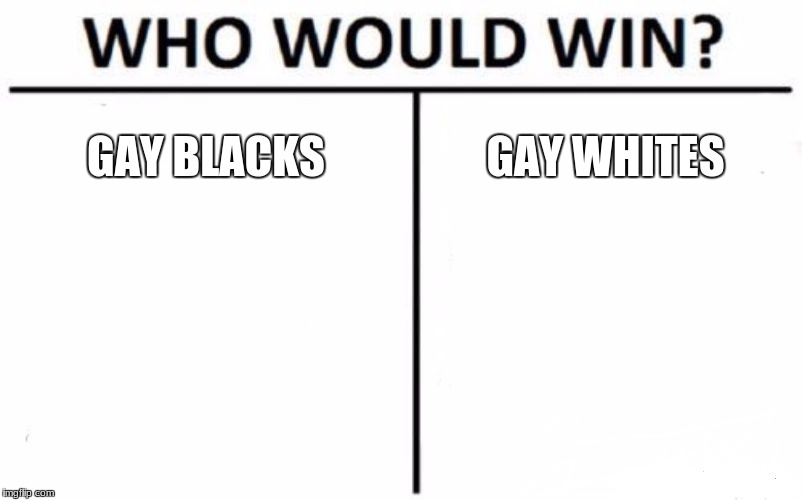 Who Would Win? Meme | GAY BLACKS GAY WHITES | image tagged in memes,who would win | made w/ Imgflip meme maker