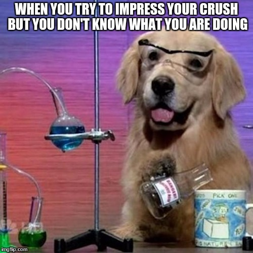 I Have No Idea What I Am Doing Dog | WHEN YOU TRY TO IMPRESS YOUR CRUSH BUT YOU DON'T KNOW WHAT YOU ARE DOING | image tagged in memes,i have no idea what i am doing dog | made w/ Imgflip meme maker