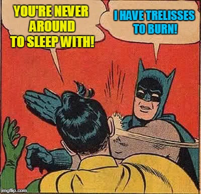Batman Slapping Robin Meme | YOU'RE NEVER AROUND TO SLEEP WITH! I HAVE TRELISSES TO BURN! | image tagged in memes,batman slapping robin | made w/ Imgflip meme maker