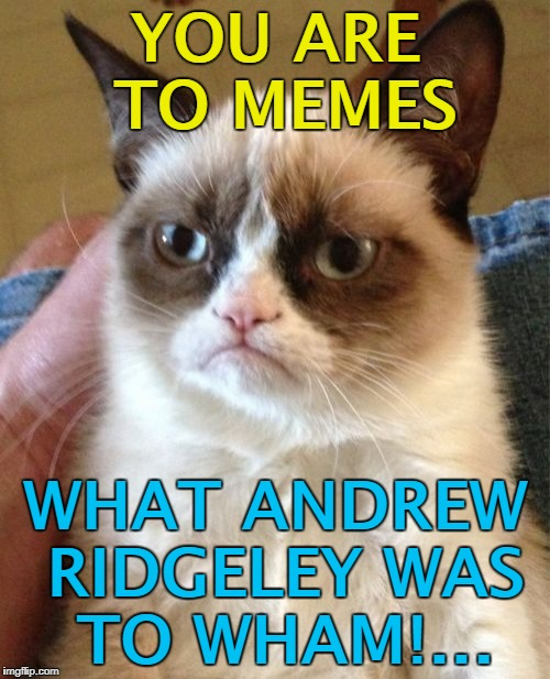 Club Memeican'ta... :) | YOU ARE TO MEMES WHAT ANDREW RIDGELEY WAS TO WHAM!... | image tagged in memes,grumpy cat,wham,andrew ridgeley,music,george michael | made w/ Imgflip meme maker