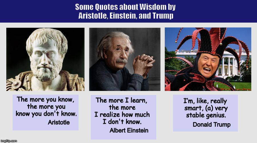Some Quotes about Wisdom by Aristotle, Einstein, and Trump | image tagged in donald trump,stable genius,smart,trump,funny,memes | made w/ Imgflip meme maker