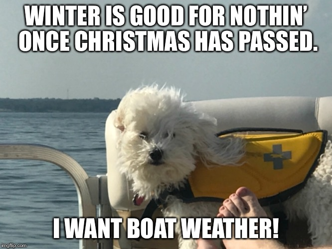 Christmas has passed | WINTER IS GOOD FOR NOTHIN' ONCE CHRISTMAS HAS PASSED. I WANT BOAT WEATHER! | image tagged in summer,cold,boating,sick of winter,funny dog memes,christmas is over | made w/ Imgflip meme maker