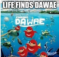 Do YOU know dawae? | LIFE FINDS DAWAE | image tagged in dawae,finding dory,finding nemo,funny | made w/ Imgflip meme maker