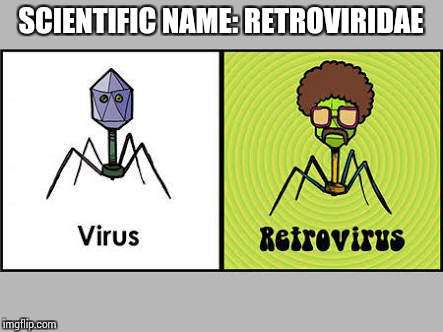 That's pure geeky! Geek Week, Jan 7-13, a JBmemegeek & KenJ event | SCIENTIFIC NAME: RETROVIRIDAE | image tagged in retro,geek week,memes,jbmemegeek,virus | made w/ Imgflip meme maker