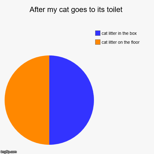 After my cat goes to its toilet | cat litter on the floor, cat litter in the box | image tagged in funny,pie charts | made w/ Imgflip pie chart maker
