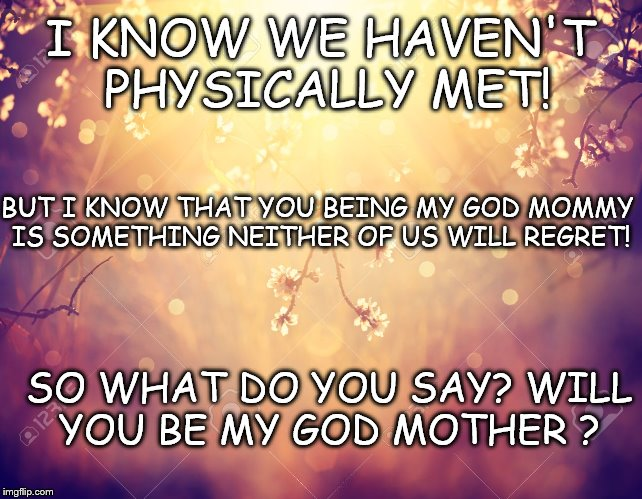 Flowers | I KNOW WE HAVEN'T PHYSICALLY MET! SO WHAT DO YOU SAY? WILL YOU BE MY GOD MOTHER ? BUT I KNOW THAT YOU BEING MY GOD MOMMY IS SOMETHING NEITHE | image tagged in flowers | made w/ Imgflip meme maker