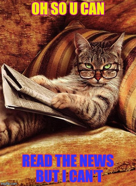 cat reading | OH SO U CAN READ THE NEWS BUT I CAN'T | image tagged in cat reading | made w/ Imgflip meme maker