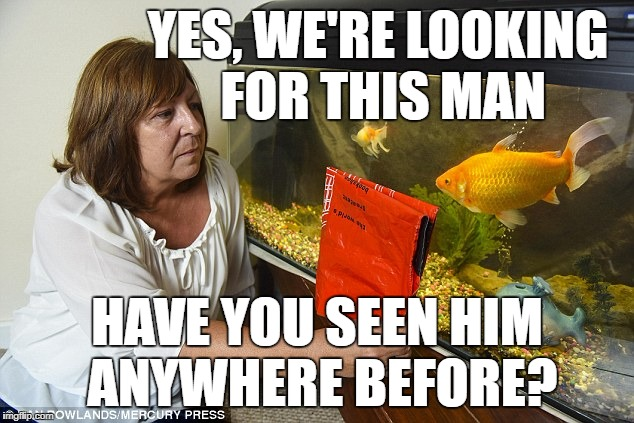 YES, WE'RE LOOKING FOR THIS MAN HAVE YOU SEEN HIM ANYWHERE BEFORE? | made w/ Imgflip meme maker