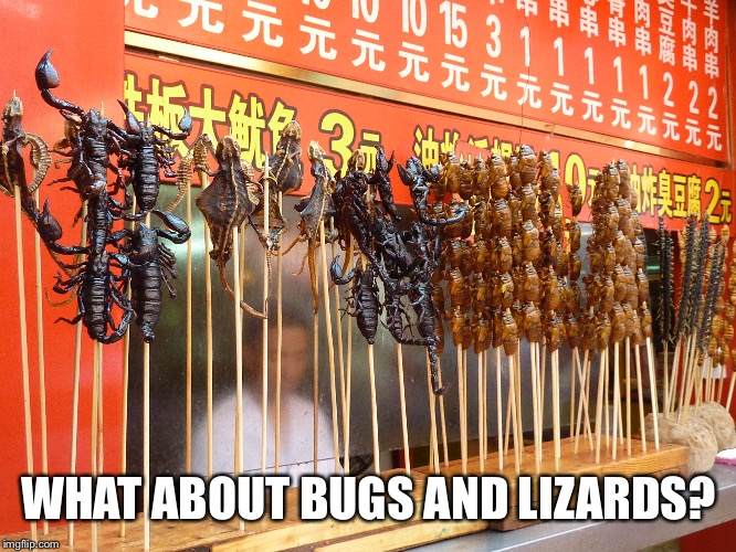 WHAT ABOUT BUGS AND LIZARDS? | made w/ Imgflip meme maker