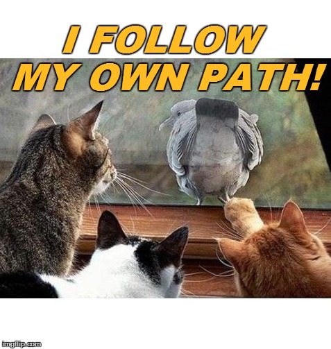 I FOLLOW MY OWN PATH! | made w/ Imgflip meme maker